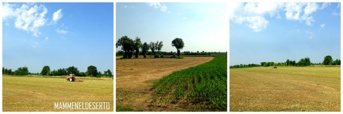 trattori e contadini