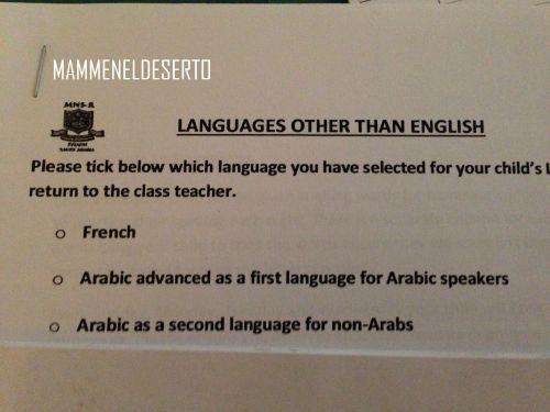 language other than english