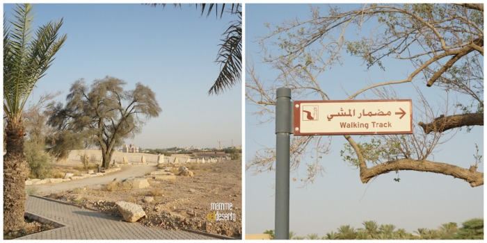 camminando-al-dq
