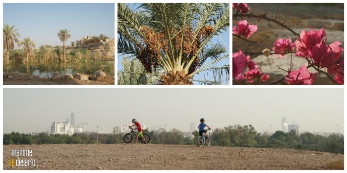 in-bici-al-dq