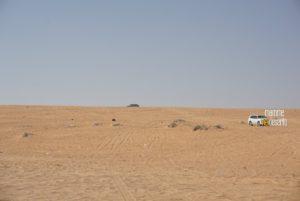 Un sabato nel deserto