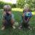 I bambini e la fotografia